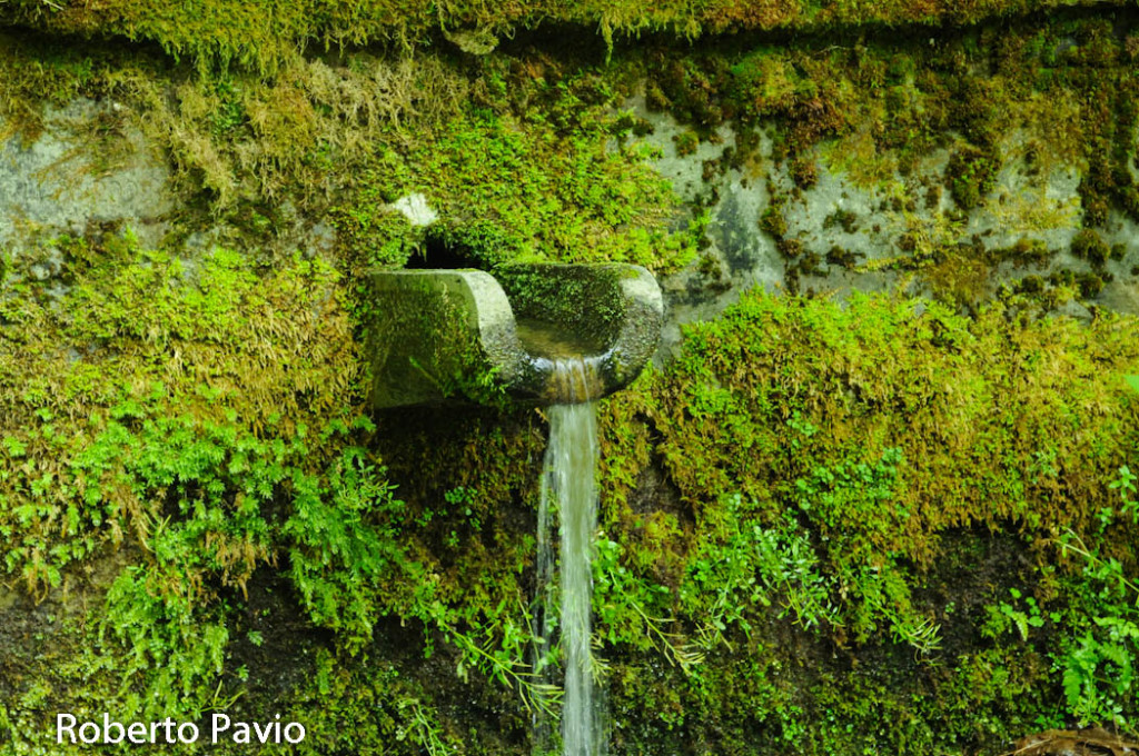 fontana-carbonasca-100-albareto
