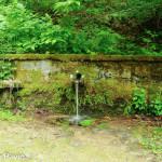 fontana-carbonasca-101-albareto