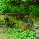 fontana-carbonasca-104-albareto