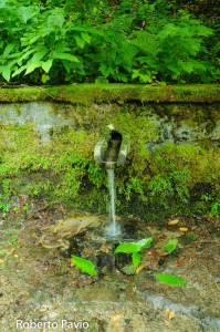 fontana-carbonasca-106-albareto