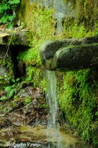 fontana-carbonasca-108-albareto