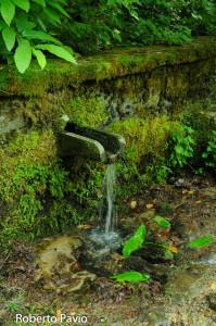 fontana-carbonasca-109-albareto