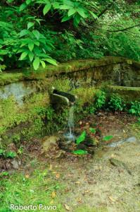 fontana-carbonasca-110-albareto