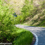 the-abbots-way-104-trail