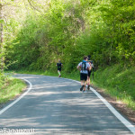 the-abbots-way-105-trail