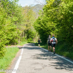 the-abbots-way-109-trail