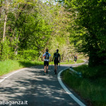 the-abbots-way-111-trail