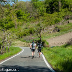the-abbots-way-112-trail