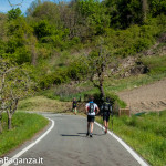 the-abbots-way-113-trail