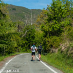 the-abbots-way-116-trail