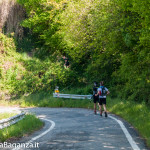 the-abbots-way-117-trail