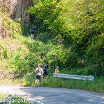the-abbots-way-118-trail