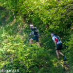 the-abbots-way-120-trail
