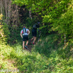the-abbots-way-123-trail