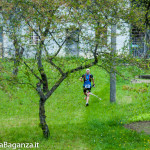 the-abbots-way-144-trail