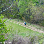 the-abbots-way-146-trail
