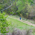 the-abbots-way-147-trail