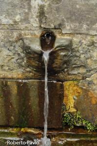 fonte-ferruginosa-100-bedonia