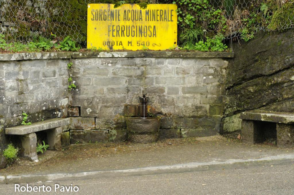 fonte-ferruginosa-107-bedonia
