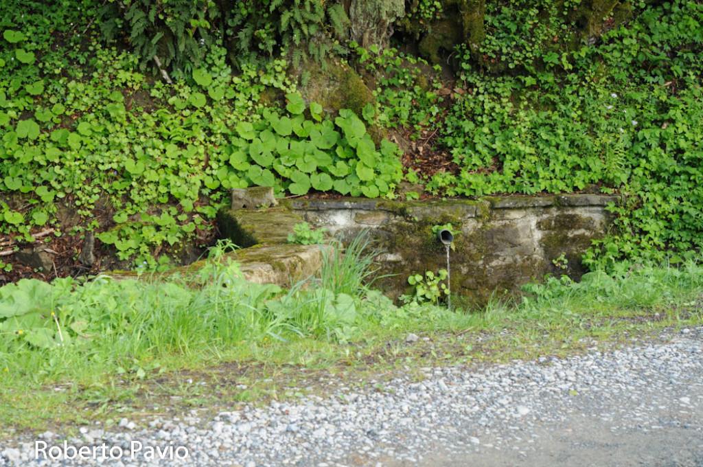 fonte-dei-pistoi-111-cacciarasca-albareto