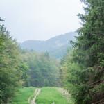 ultra-k-trail-198-corniglio