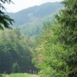 ultra-k-trail-233-corniglio