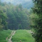 ultra-k-trail-249-corniglio