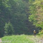ultra-k-trail-254-corniglio