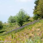 ultra-k-trail-275-corniglio