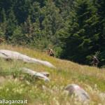 ultra-k-trail-290-corniglio