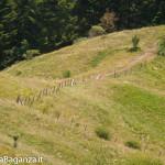 ultra-k-trail-297-corniglio