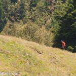 ultra-k-trail-301-corniglio