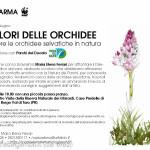 acquerello-orchidee-giugno