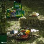 installazioni-artistiche-coscienza-festival-139-berceto