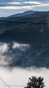 alba-con-nebbia-estiva-107