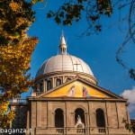 bedonia-109-basilica-di-san-marco-foliage