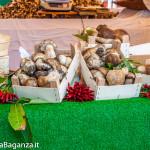 fiera-fungo-borgotaro-igp-117-fiera-gastronomica