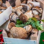 fiera-fungo-borgotaro-igp-122-fiera-gastronomica