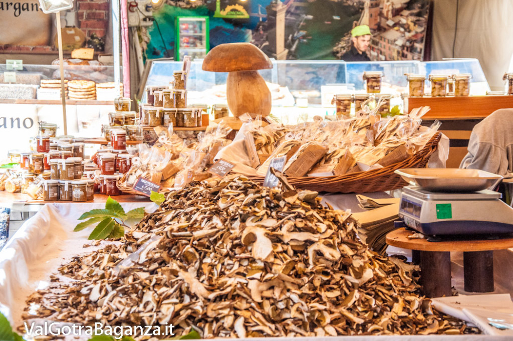 fiera-fungo-borgotaro-igp-130-fiera-gastronomica