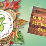 fiera-fungo-borgotaro-igp-2
