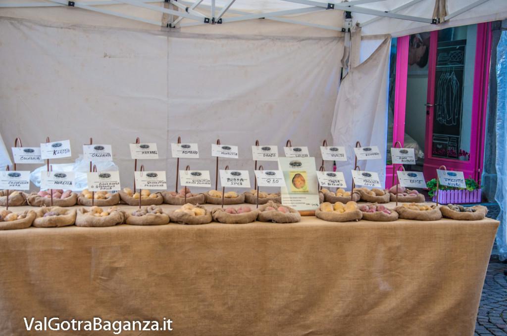 fiera-fungo-borgotaro-igp-209-fiera-gastronomica
