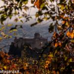 foliage-118-bardi