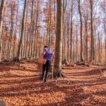 foliage-201-faggeta