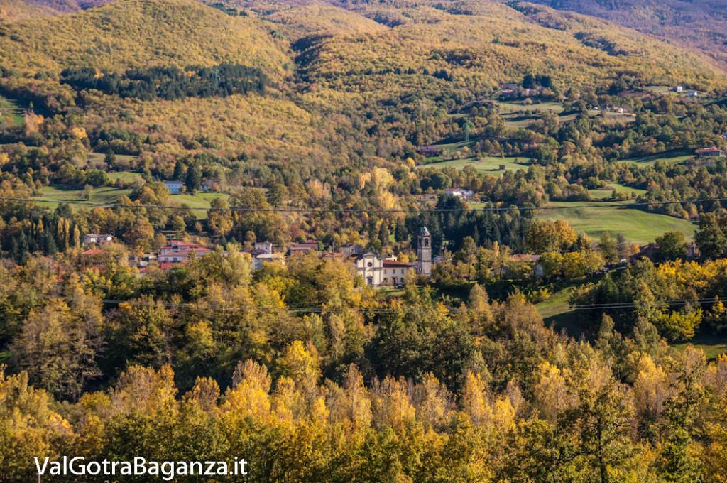 foliage-albareto-101-val-gotra