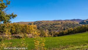 foliage-albareto-108-val-gotra