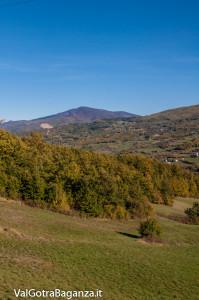 foliage-albareto-121-val-gotra