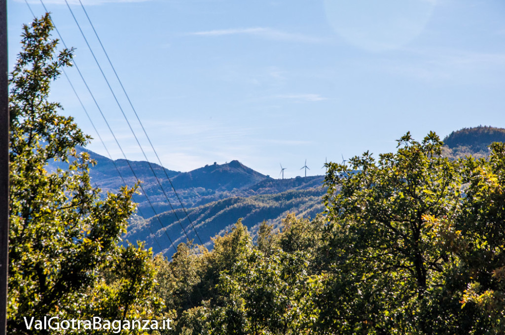 foliage-albareto-129-val-gotra