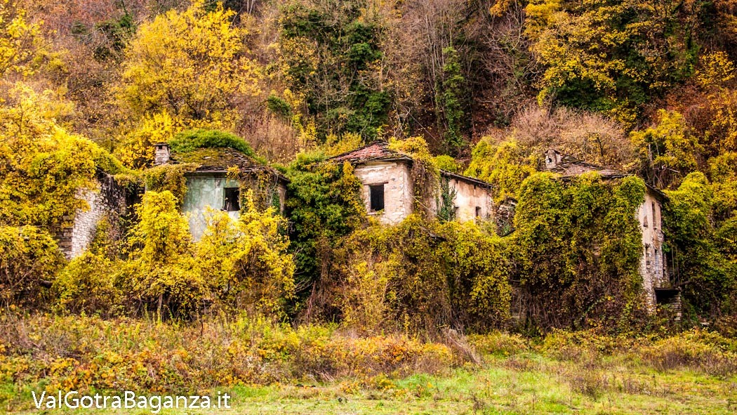 autunno-102-case-scapini