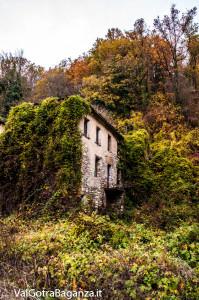 autunno-116-case-scapini