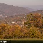 foliage-113-tombeto